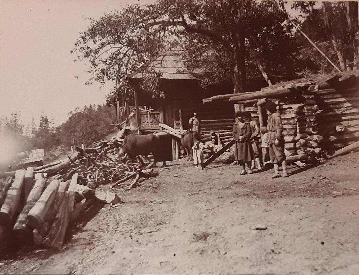 26. Заготовление лесного материала в долине Черной речки