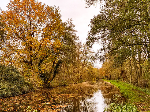 Shutt Hill Lock, Dunston, South Staffordshire District, England