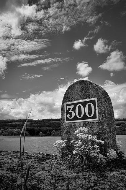 Borne 300