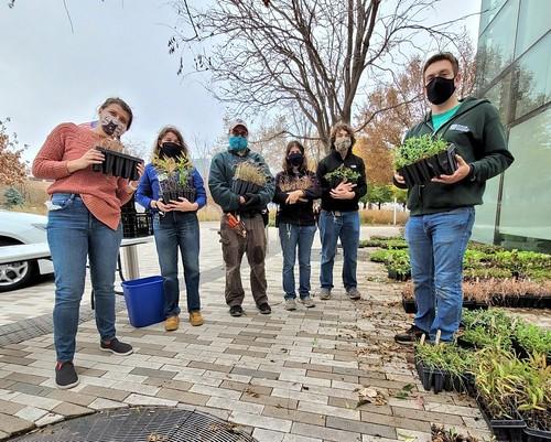 Fall Plant-A-Prairie Sale