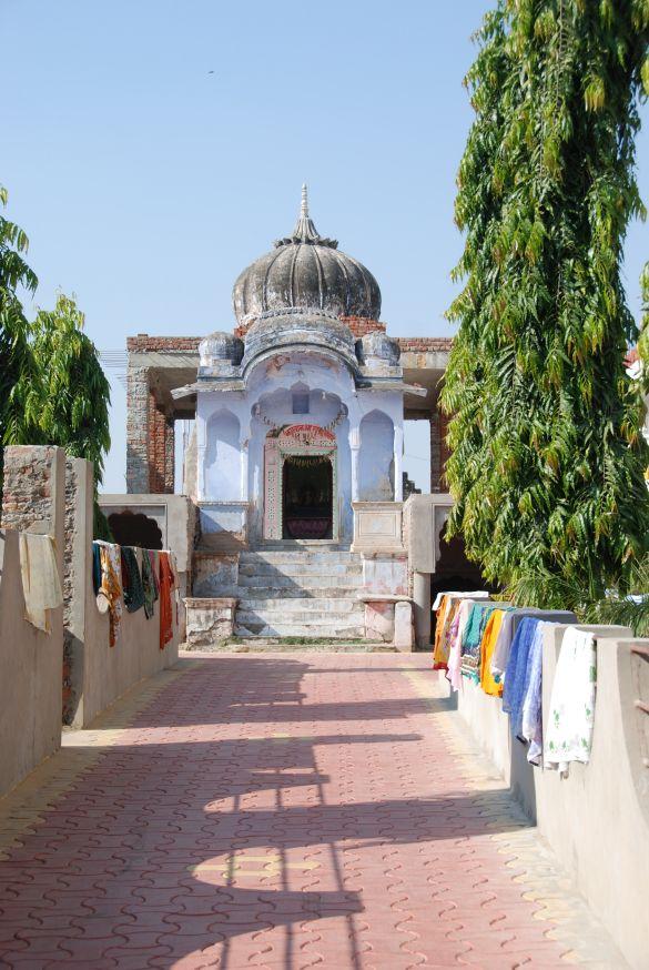 DSC_2173IndiaPushkarCamelFair