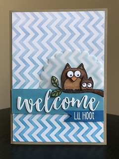 Welcome Lil Hoot
