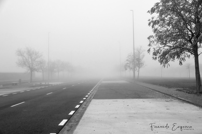 Mañana de niebla