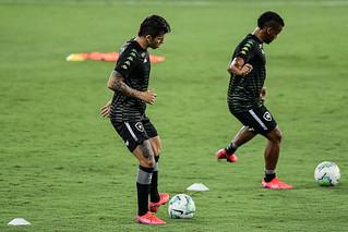 Botafogo x Red Bull Bragantino - 16/11/2020
