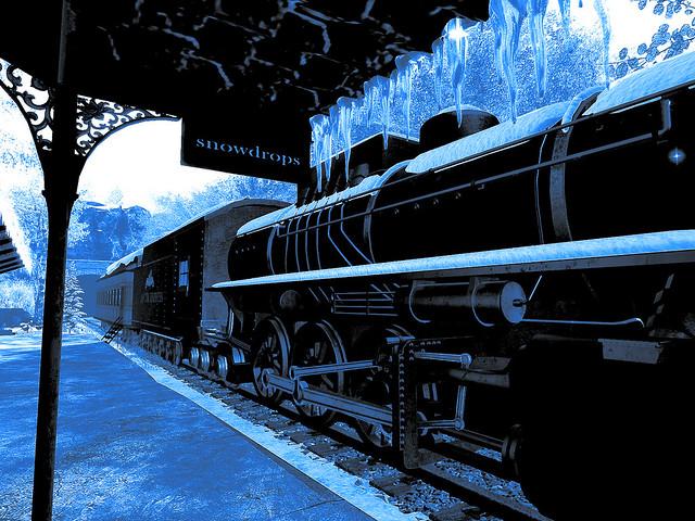 Snowdrops - Platform One