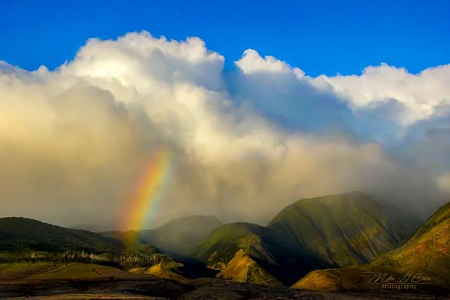 Maui Mountain Mist