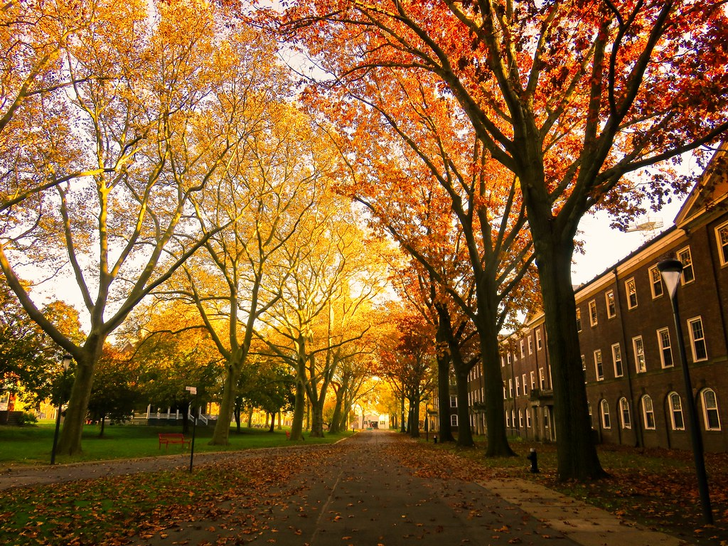 Fall on Governors Island