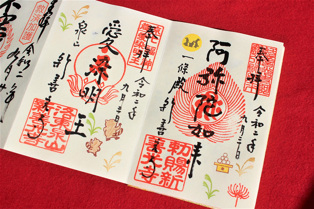 shinzenkoji-gosyuin009