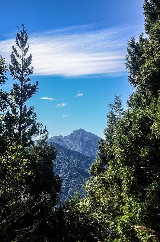 鹿坑山山頂西邊眺望加里山、哈堪尼山 (2)