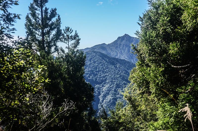 鹿坑山山頂西邊眺望加里山、哈堪尼山 (1)