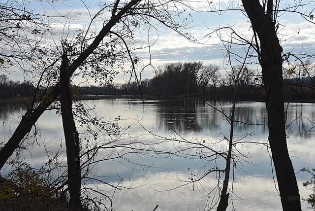 Overcast Day at Oxbow Lake