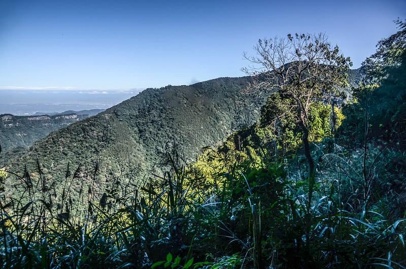鹿湖山產道(H 1360 m)北望大窩山 (1)