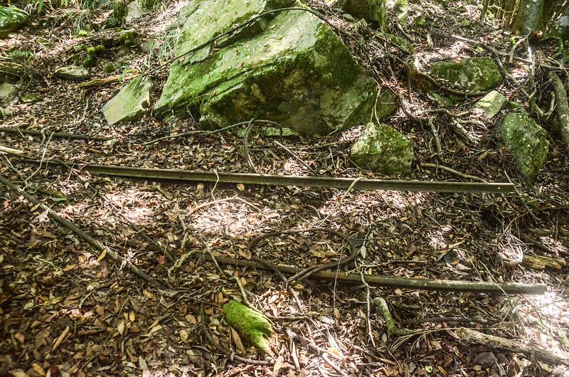 鹿坑山疑似流籠頭鐵軌、鋼纜遺跡 (1)