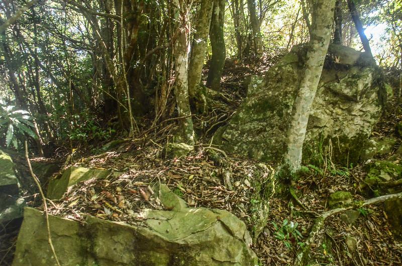 鹿坑山岩塊稜線