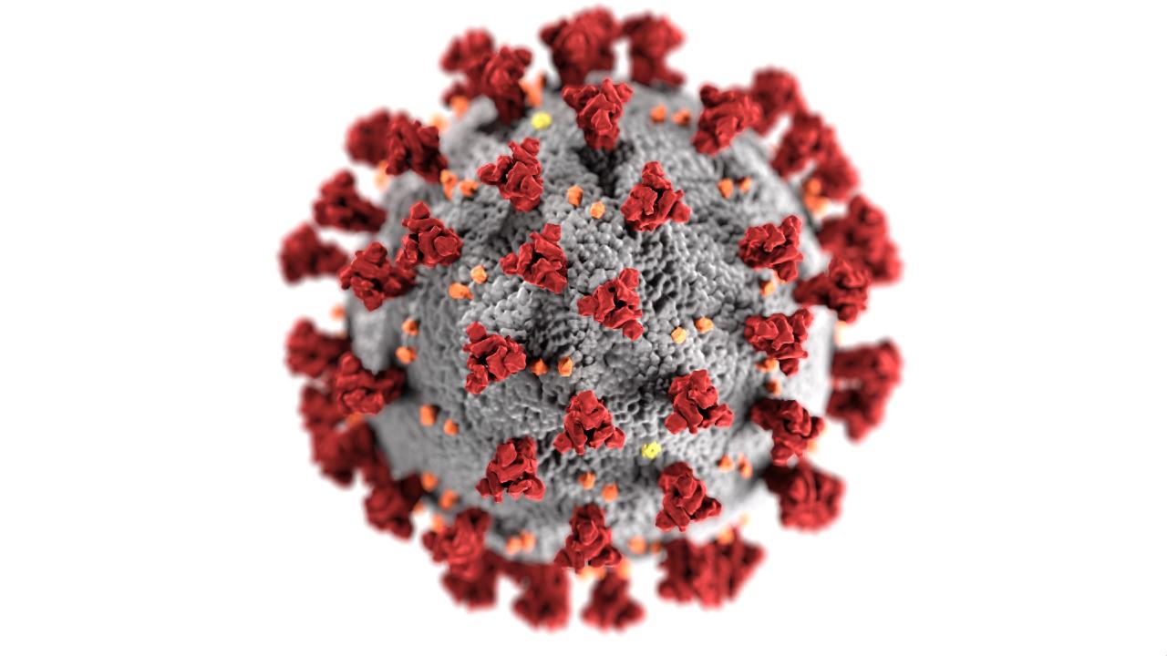 An illustration of coronavirus