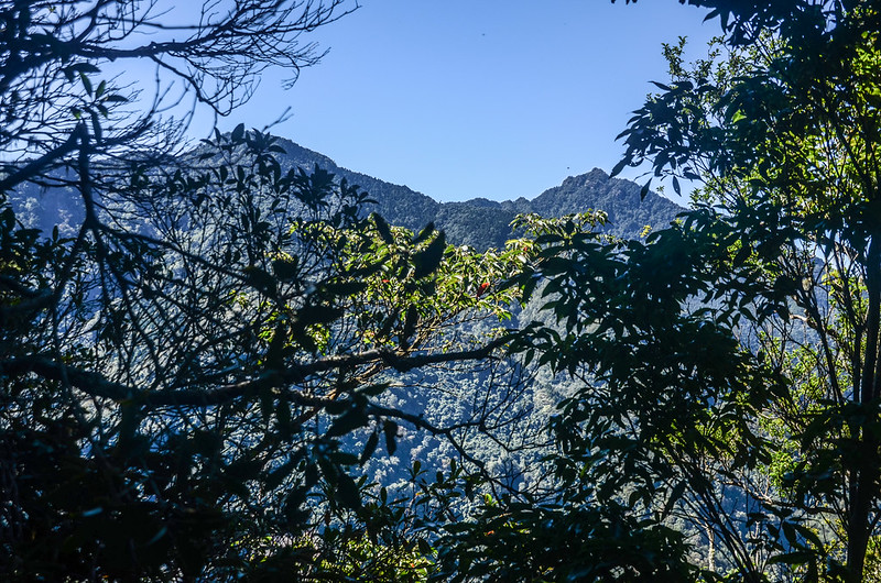 鹿坑山稜線(H 1575 m)西南眺加里山、哈堪尼山