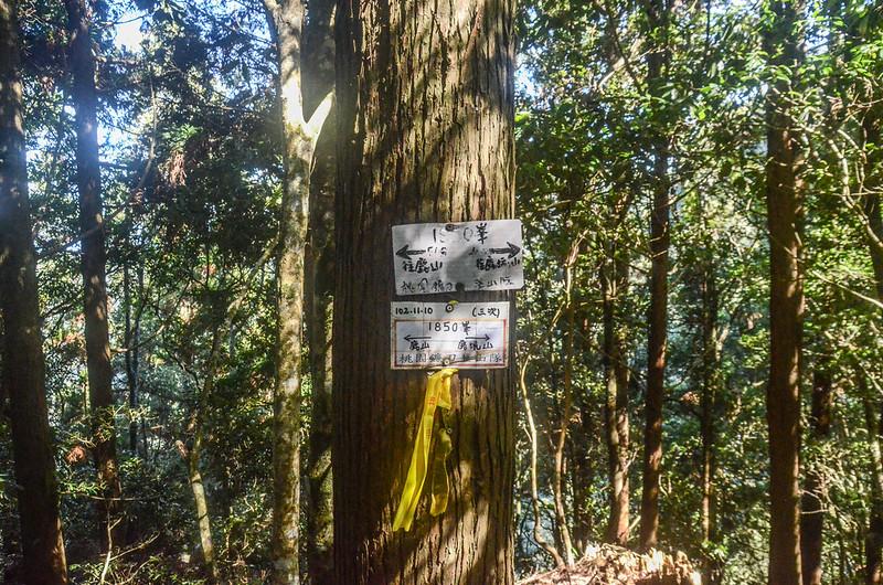 鹿坑山1850峰 (2)
