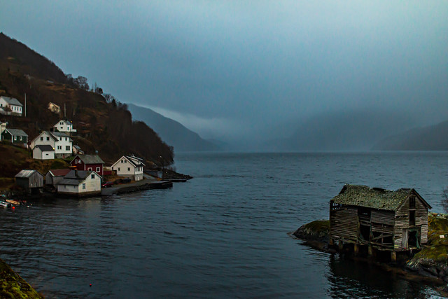 Fog in the Fjord