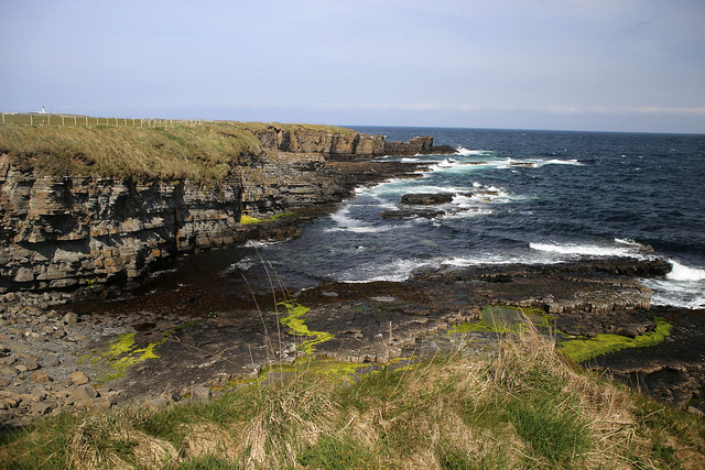 The coast south of Noss Head