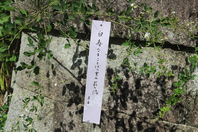nashinokii-gosyuin014