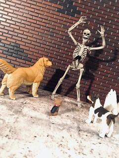 Skeleton's Nightmare
