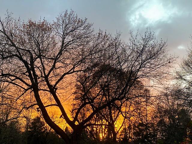 A cold windy November Sunset