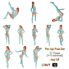 Pin Up 11Poses - out now