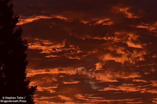 red dawn sunrise clouds eerie black tree westsacramento nwn 100xthe2020edition 100x2020 image84100