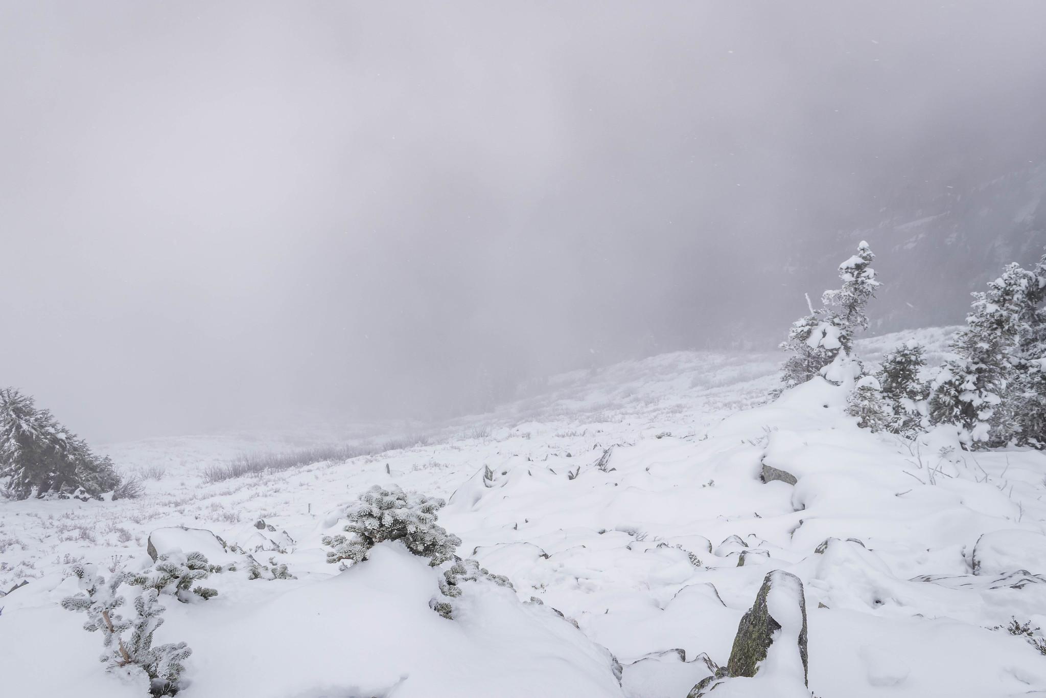 Alaska Mountain southern slopes