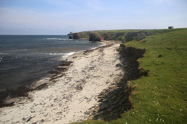The coast east of Ackergillshore