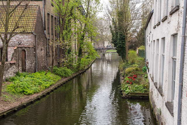 Armchair Traveling - Springtime in Bruges