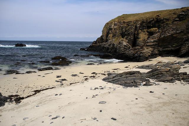 The coast near Noss Head