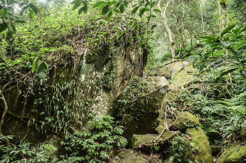 南大龜山拉繩攀岩路段 (2)
