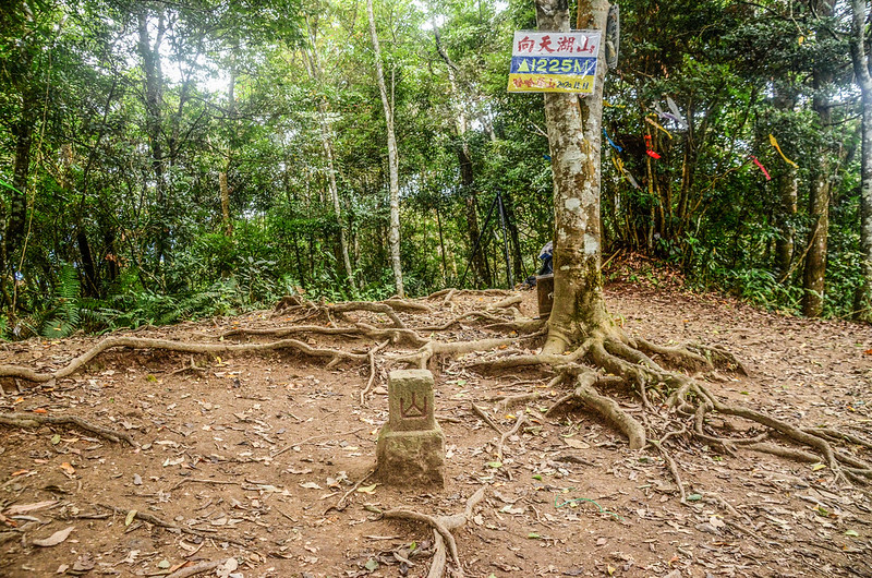 向天湖山冠字補川(11)山字森林三角點(Elev. 1220 m) (2)