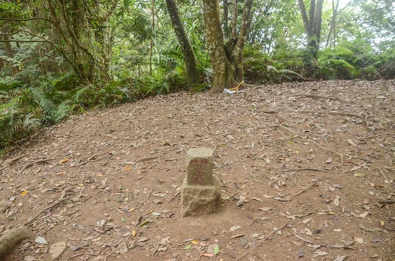 向天湖山冠字補川(11)山字森林三角點(Elev. 1220 m) (1)