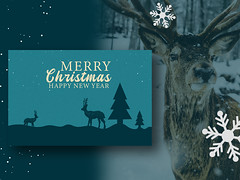 Christmas card, or Invitation card