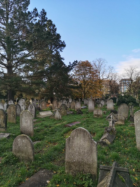 A morning walk around Brompton Cemetery
