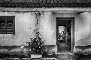 The Man With The House of The Penjing (Suzhou, China. Gustavo Thomas © 2020) by Gustavo Thomas