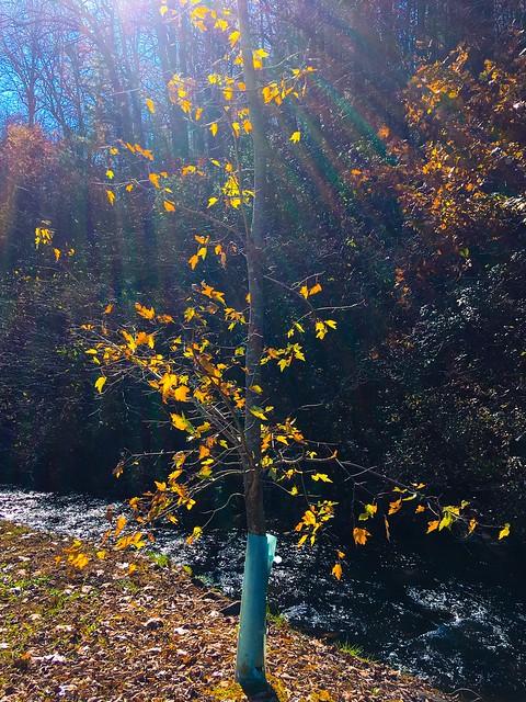 Down the river of faith
