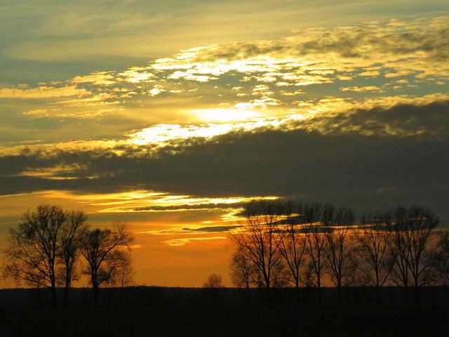 Gold-Orange November Sky