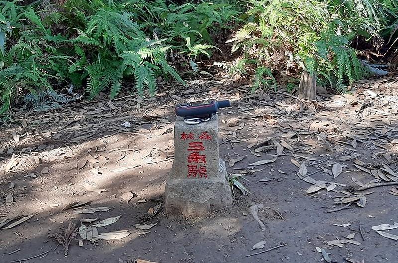 三角湖山冠字補川(07)山字森林三角點(Elev. 850 m) (1)