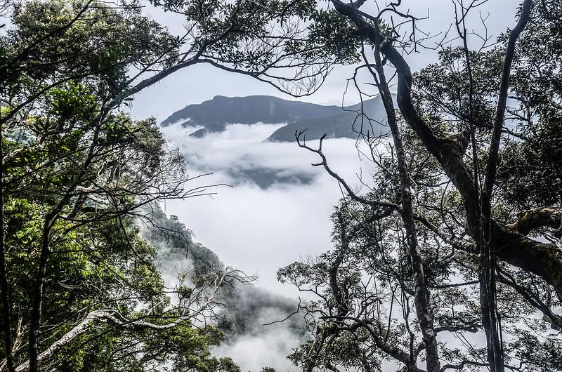 南大龜山稜線(H 1262 m)東南遠眺鵝公髻山