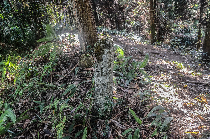 三角湖山稜線平山界水泥柱(Elev. 881 m)