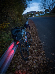 Multi Surface Express Cargo Bike