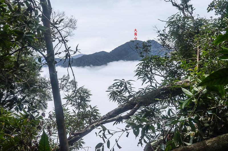 南大龜山稜線(H 1262 m)東南遠眺大窩山 1