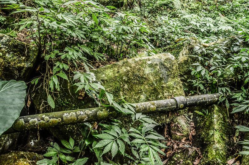 南大龜山亂石陡坡區 (3)