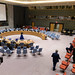 Security Council Meets on Situation in Mali