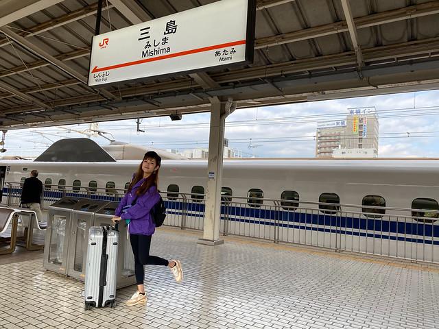 Tokai Region Itinerary: Shizuoka