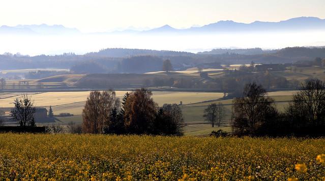 Das zarte Licht des Herbstes - The tender light of autumn