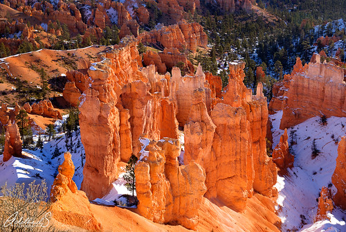 Bryce Canyon in Snow and Sun (explored)